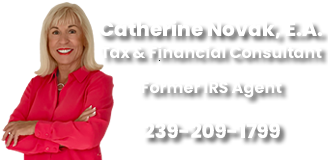 Catherine Novak - Tax & Financial Consultant Fort Myers, Cape Coral